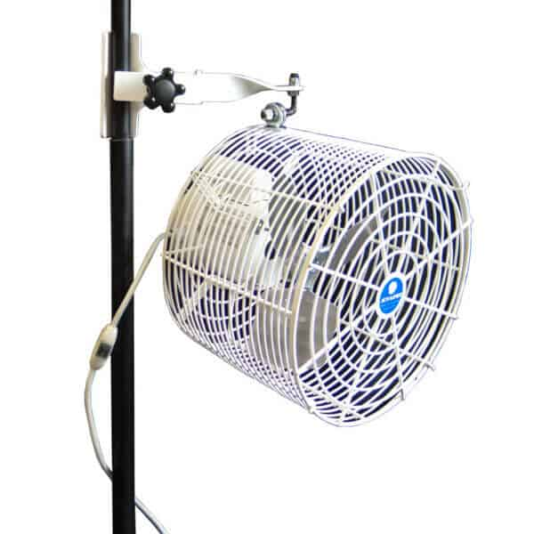 Tent sidepole fan rental